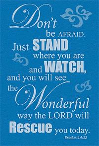 no fear god rescue
